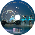 Gwinnett Ballet Theatre Cinderella 2015: 2:30 pm Saturday 10/3/2015 Blu-ray