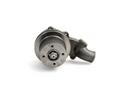 Water Pump 3640565M91