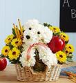 Fresh Floral Mix