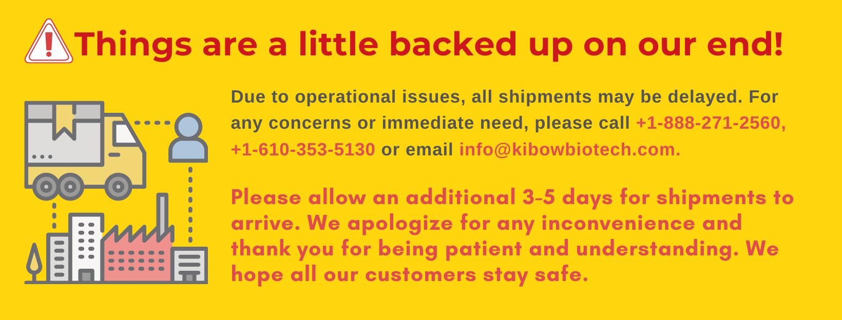 kibow Shipping Banner