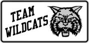 Wildcats Spirit-02