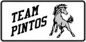 Pintos - Spirit-02