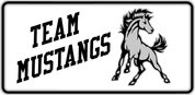 Mustangs - Spirit-02