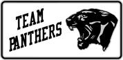 Panthers - Spirit-02
