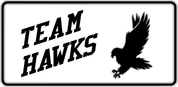 Hawks - Spirit-02