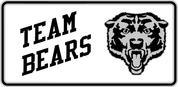 Bears - Spirit-72-02