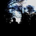 DODSON AND FOGG-WARNING SIGNS-UK Acid Prog Folk-NEW CD