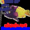 26504  Fairy Basslet Swimming Fish (26504)