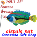 26511  Peacock Wrasse Swimming Fish (26511)