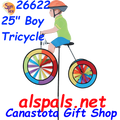 "26622 Boy 25"" : Tricycle Spinner (26622)"