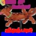 """21823  Dog (Dachshund 28"""") , Whirligig (21823)"""