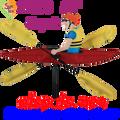 """21853  Kayak 20"""" , Whirligig (21853)"""