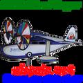 "26308 Island Hooper 30"" : Airplane Spinners (26308)"