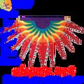 53217  Progressive Banner - Sun Burst ( Red ) (53217)