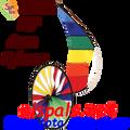 22306  Aero Spinner (22306)