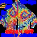 """17116  Delta Fringe """"Tie Dye """" : Fun Flyer (17116)"""