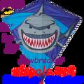 """15403  Jawbreaker Shark: Diamond 30"""" Kites by Premier (15403)"""