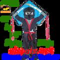 44196  Ninja ( Flying ): Large Easy Flyer Kites by Premier (44196)