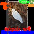 Egret :  Garden Flag by Premier Illuminated