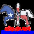 "24914 Texas Horse 19"": Petite Wind Spinner (24914)"