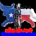 """24915 Texas LongHorn 17.5"""": Petite Wind Spinner (24915)"""