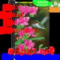 56187  Opening Day Hummingbird : Garden Flag by Premier Illuminated (56187)