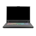 "17.3"" FHD/144Hz/WVA/72% NTSC/Matte Display with NVIDIA G-Sync Technology , i7-9750H ( 2.6 GHz ), NVIDIA GeForce RTX  2070 w/8GB GDDR6, 16GB DDR4 3000 SDRAM NOTEBOOK COMPUTER"