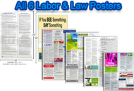 Mega Poster Pack:  California & Federal Labor Posters & Compliance Posters - 6 posters total