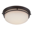 LED Ceiling Fixture - 21 Watt - 120 Volt - Frosted Glass