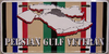 License Plate, Persian Gulf Veteran