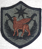ACU Patch, Multi-National Force