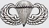 Decal, Para Wing