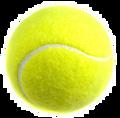 2012 4A/5A State Team Tennis Championship(2 Disc Set)