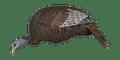 Flextone THUNDER CHICK Feeding Hen