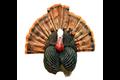 Flextone Thunder Chicken 1/4 Strut Jake/Gobbler Turkey Decoy