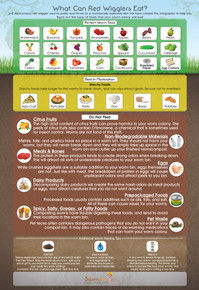 """What Can Red Wigglers Eat?"" Infographic Poster"