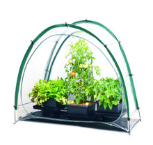 Culti Cave Portable Greenhouse