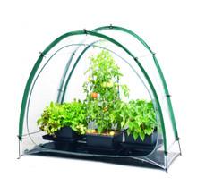 Culti Cave Portable Greenhouse