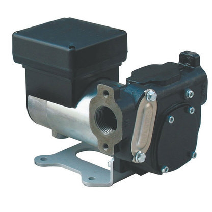 Dual Voltage 12/24 Volt Diesel Pump 30/60 LPM
