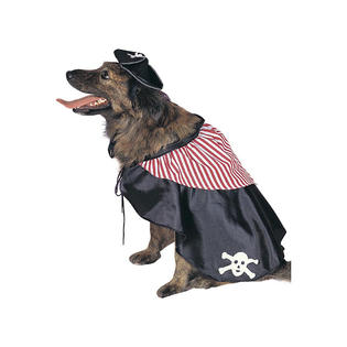 dog-pirate-costume.jpg