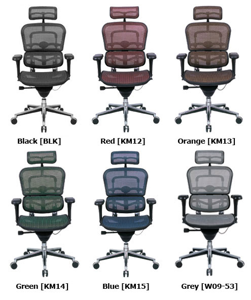 Raynor Ergohuman Mesh Chair Me7erg Ergonomic Chair Pro