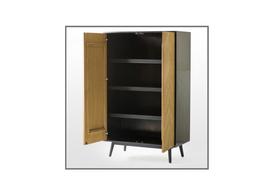 Emilio 2 Door Cabinet