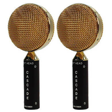 Fathead Pair (Brown/Gold)