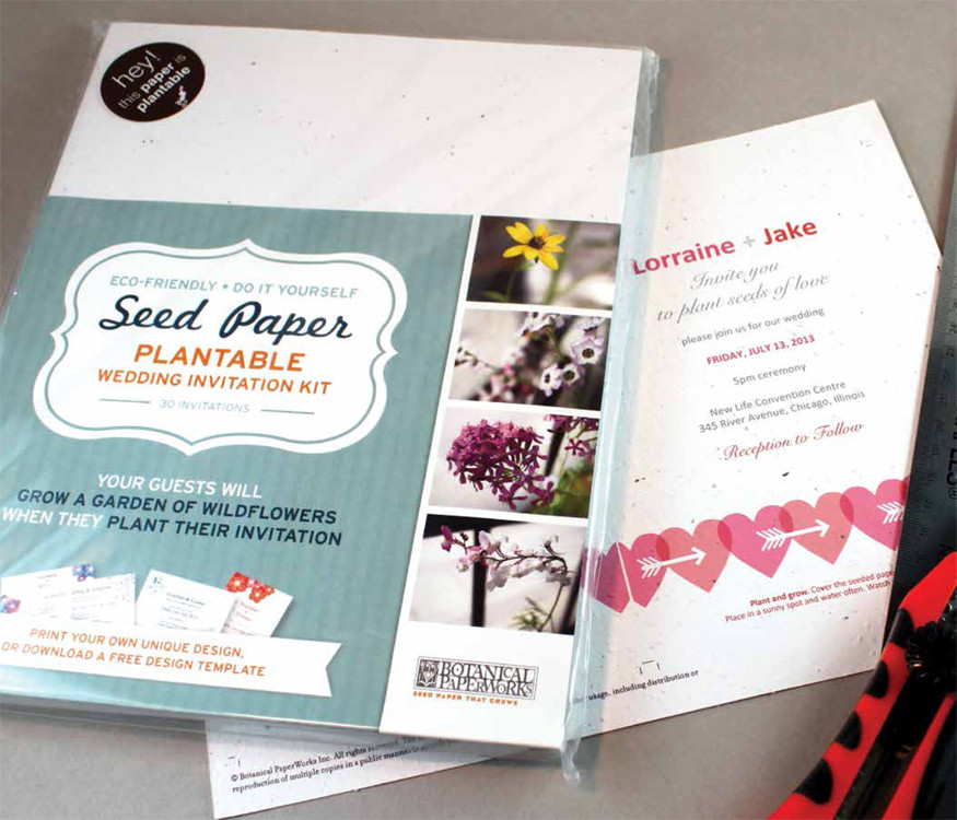 Do It Yourself Diy Seeded Paper Wedding Invitation Kit