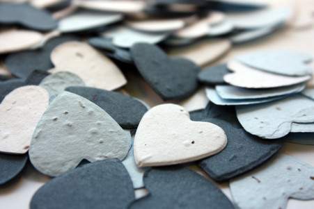"""Out of the Blue"" Heart Shaped Plantable Confetti Set"