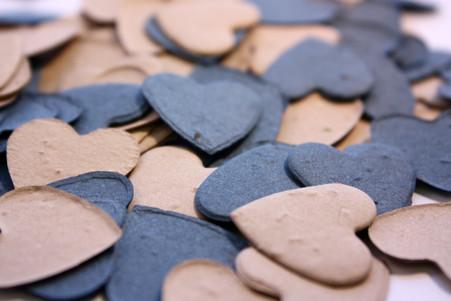 """""""Lake Shore"""" Heart Shaped Plantable Confetti Set"""