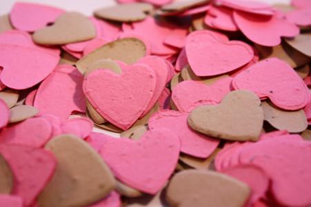 """Chocolate Strawberries"" Heart Shaped Plantable Confetti Set"