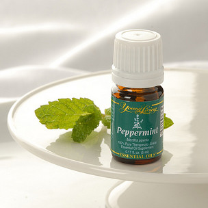 Peppermint Essential Oil 15ml - Young Living