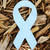 "Blue Awareness Ribbon 1.5"" x 3"" Plantable Wildflower Seeded Paper Favor Shape"