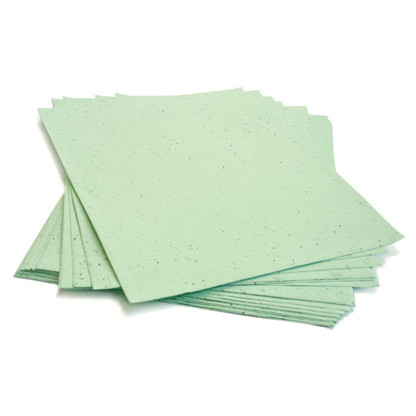 """Green Plantable Wildflower Seed Recycled Paper Sheets - 8.5"""" x 11"""""""